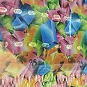 Japanese Chiffon Saree (Diamond Cut - Colorful Box Print)