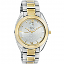 Titan Brass Case Silver White Dial Analog Watch for Men (1557BM02)