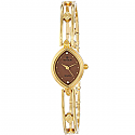 Titan Chocolate Dial Analog Watch for Women (2250YM02)