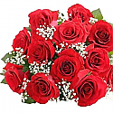 One Dozen Lovely Valentine Red Roses Bunch with Gipsy Fillers