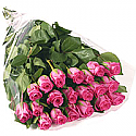 20 Long Stem Pink Roses Bouquet