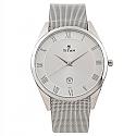 Titan Silver Dial Analog Watch for Men (90054SM01)