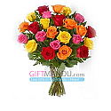 20 Multi-Color Valentine Long Stem Roses
