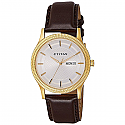 Titan Analog Champagne Dial Men's Watch - 1650YL01