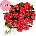 20 Fresh Red Carnations Bunch