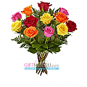 One Dozen Long Stem Rainbow Roses