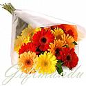20 Fresh Mix Color Gerbera Daisy Bunch